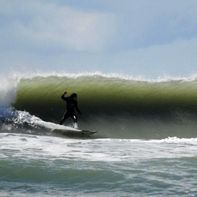monia-surf