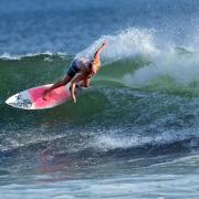 Alethea surfing